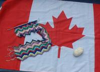 Zztopflag